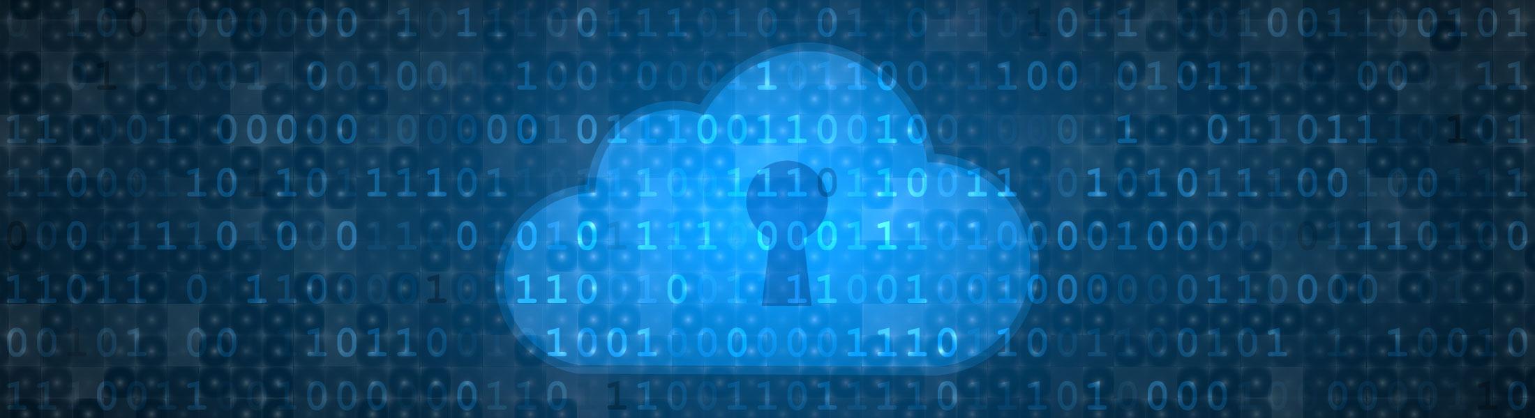 csn_header_privacypolicy